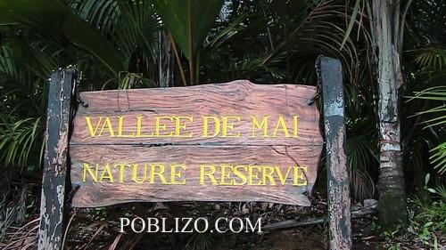Vallée_de_Mai