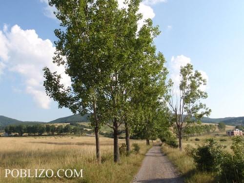 Един от възможните пътища за слизане от Люлин до Банкя