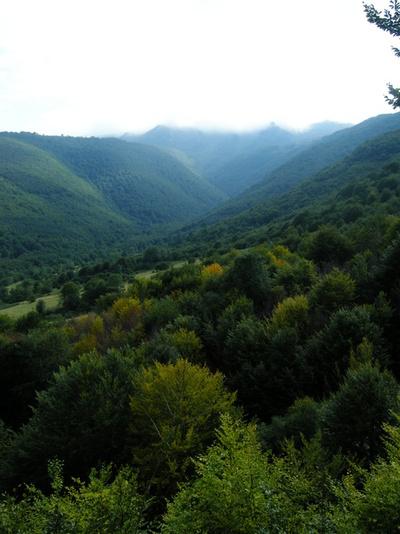 Върхът е обвит в мъгла, а долу в ниското есента е започнала да прошарва гората