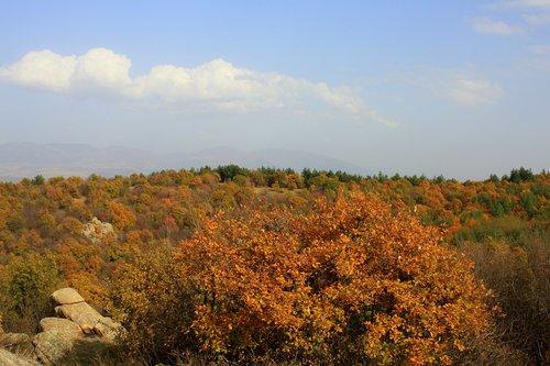 Есен край мегалита
