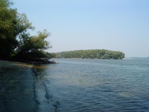 Изглед от брега към реката
