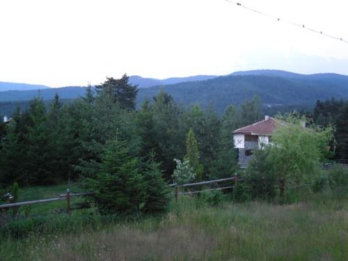 Във вилната зона на Ракитово