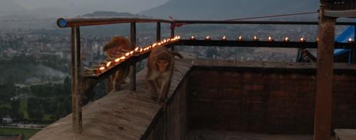 nepal25