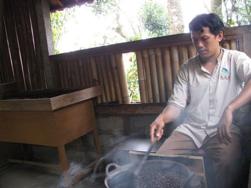 Във фермата за кафе