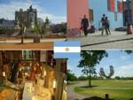 argentina_flag_small