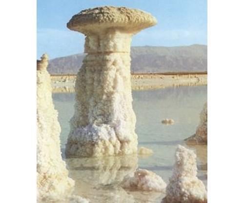 Солни гъби в Мъртво море