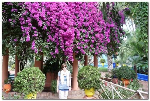 ботаническите градини Мажорел