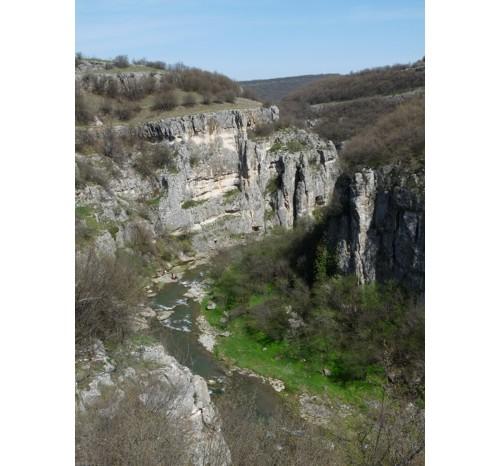 Поглед към каньона от гората