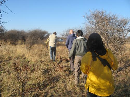 Проследяването на носорози – влизане в буша в индианска нишка след рейнджъра