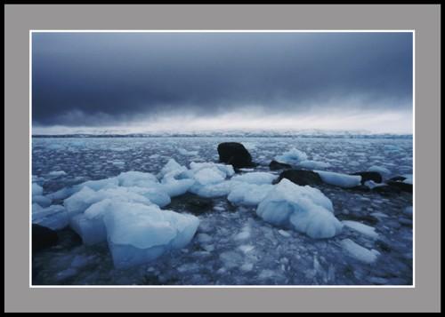 Остров Ливингстън - Южният залив