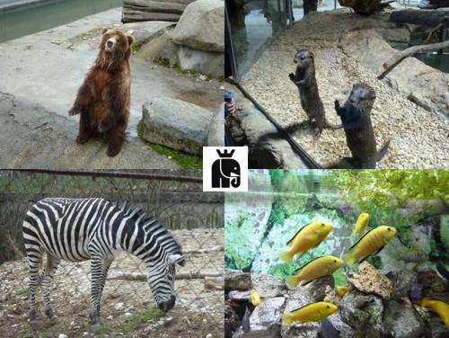 sofia_zoo