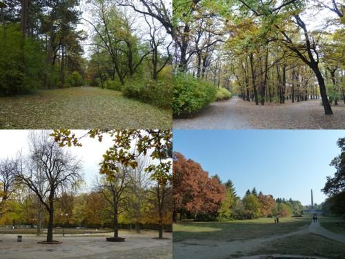 Есен в Борисовата градина