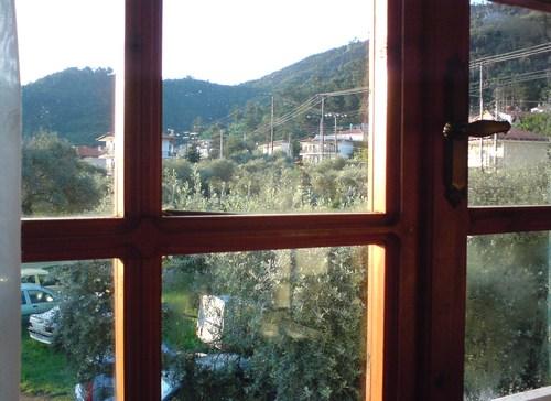 През прозореца