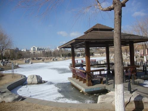 Заледено езерце в парка