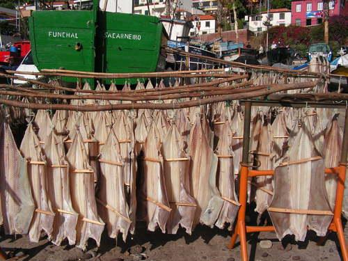 Сушене на риба на брега