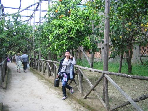 Соренто, портокалова градина