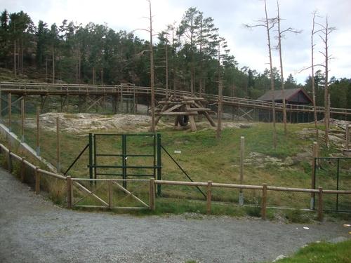 Мост за наблюдение на мечките