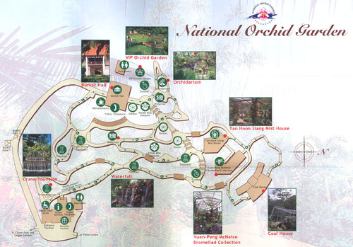 Карта на забележителностите в Националната градина на орхидеите