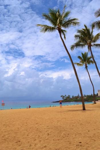 Хаваи, Уаймеа