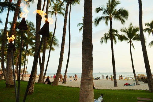 Хавай, Тики торчес