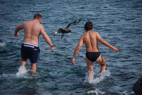 Коко и Иван борят морелетник за кръста на Йордановден в ледените води през базата, 6 януари 2013