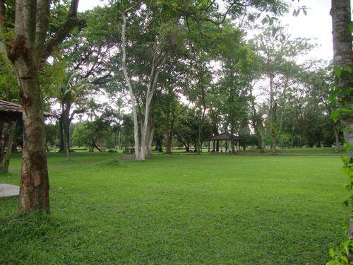 Парка на Прамбанан