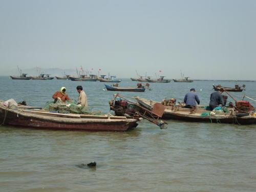 Морето денем е работно място