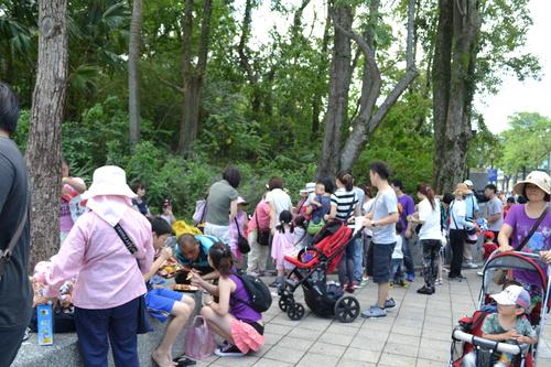 Тайпе, зоопарка