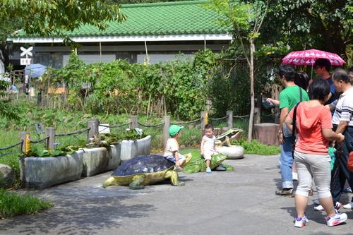 Тайпе, зоопарк, забавления за децата