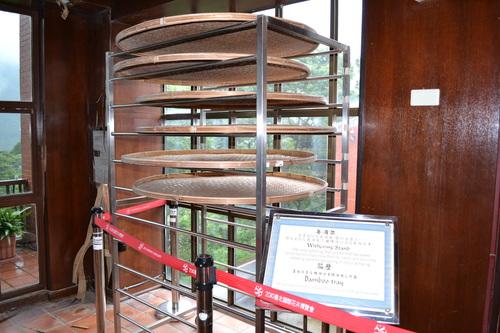 Тайпе, Маоконг, в музея на чая
