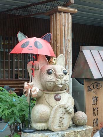Тайпе, Маоконг. Котките са навсякъде.