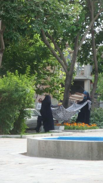 Иран, младежи брулят черницата