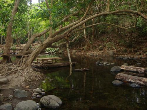 Филипини, вляво от дървото е нашият бивак