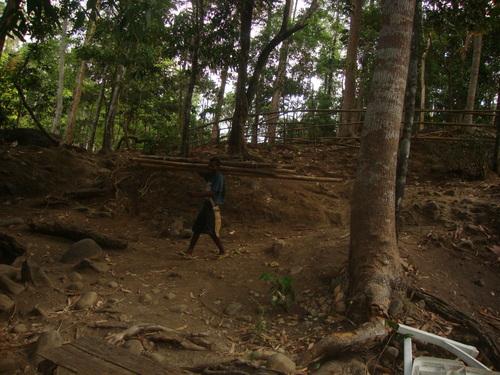 Филипини, Симсон носи бамбук за огъня