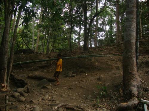Филипини, Джей Ар е насякъл млад бамбук, в който ще готви