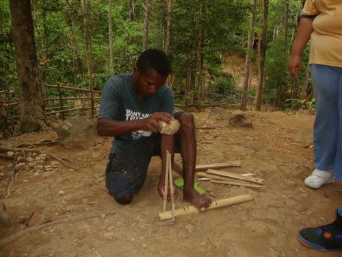 бамбукът се обездвижва