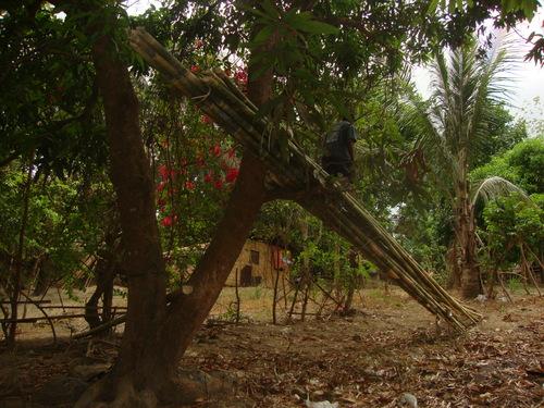 бамбуков мост, закрепен към манговото дърво, Симсон слиза по моста