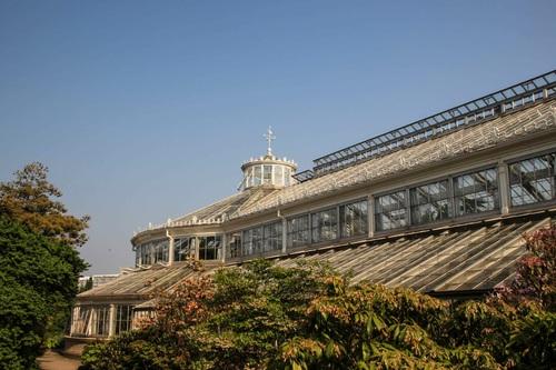 Дания, Копенхаген, дворец Rosenborg castle, Ботаническите градини