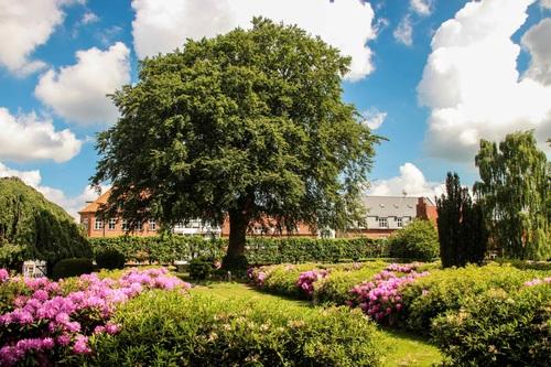 Дания, Roskilde