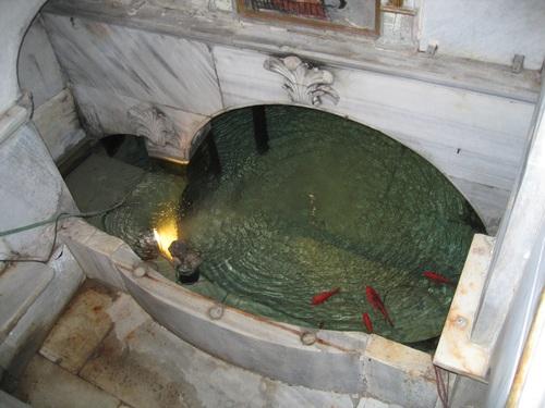 Необикновенните златни рибки и досега живеят в водоема и от там идва турското име на манастира Баликли-Рибно място.