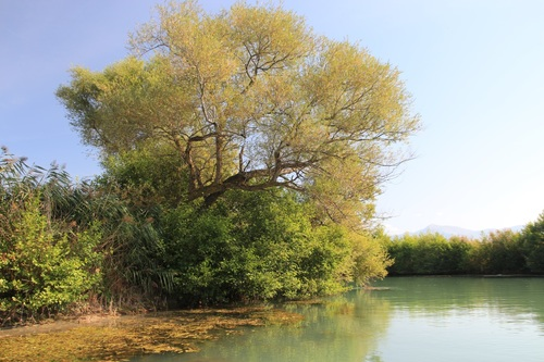 Гърция, река Ахерон