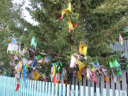 Завързани по дърветата обредни ленти и молитви върху парчета плат
