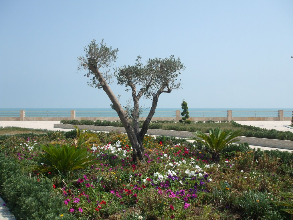 Крайбрежният парк в Астара беше добре подържан